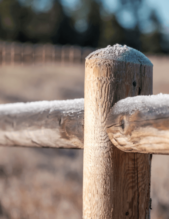 Real Estate Dispute Fence